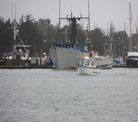 Humboldt Bay Harbor Recreation and Conservation District/City of Eureka Maintenance Dredging