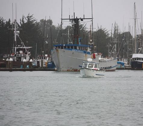 Humboldt Bay Harbor Recreation and Conservation District/City of Eureka Maintenance Dredging